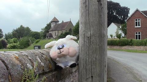 Walking in Shropshire - Holmer church sheep - walking & wine (2)
