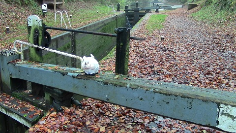 Walking in Shropshire - Lock Sheep - walking & wine